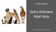 """[Mercredi 27 Février] Spécial """"Soins des Animaux avec nos produits Aloé Vera"""""""