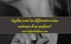 Quelles sont les différentes notes senteurs d'un parfum?