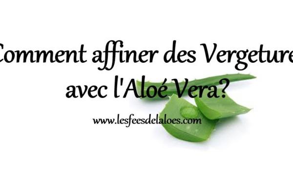 Comment affiner des Vergetures avec l'Aloé Vera?