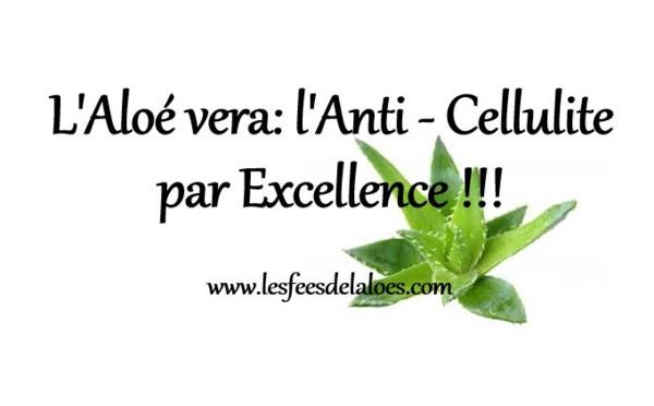 Cellulite - L'Aloé vera: l'Anti-Cellulite par Excellence !!!