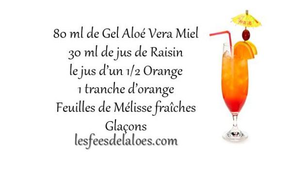 Recette Cocktail Aloé Vera N°1