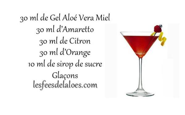Recette Cocktail Aloé Vera N°4